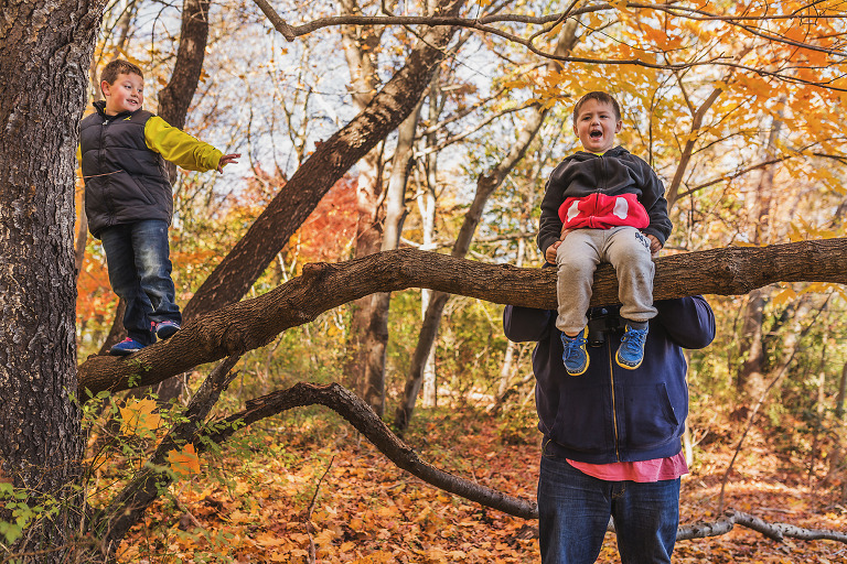 long island family photogrpaher, climbing trees with daddy