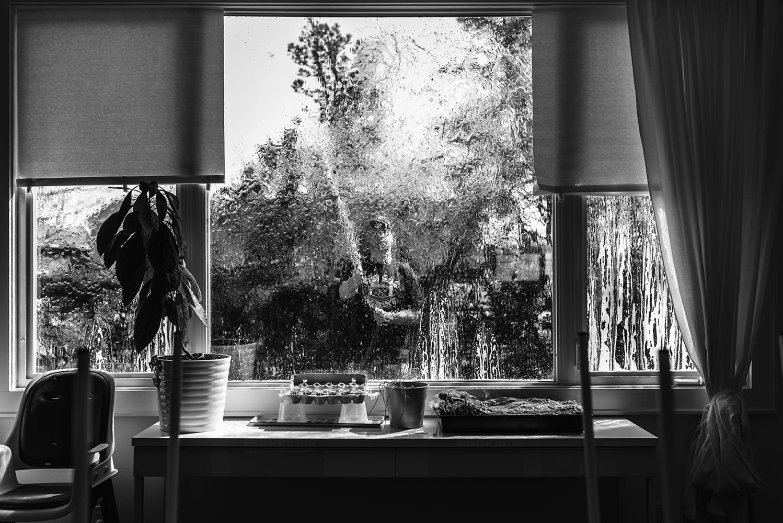 washing windows in the spring